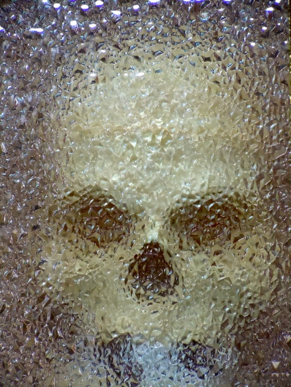 A skull looking through opaque glass. Photo by Rodney Steadman